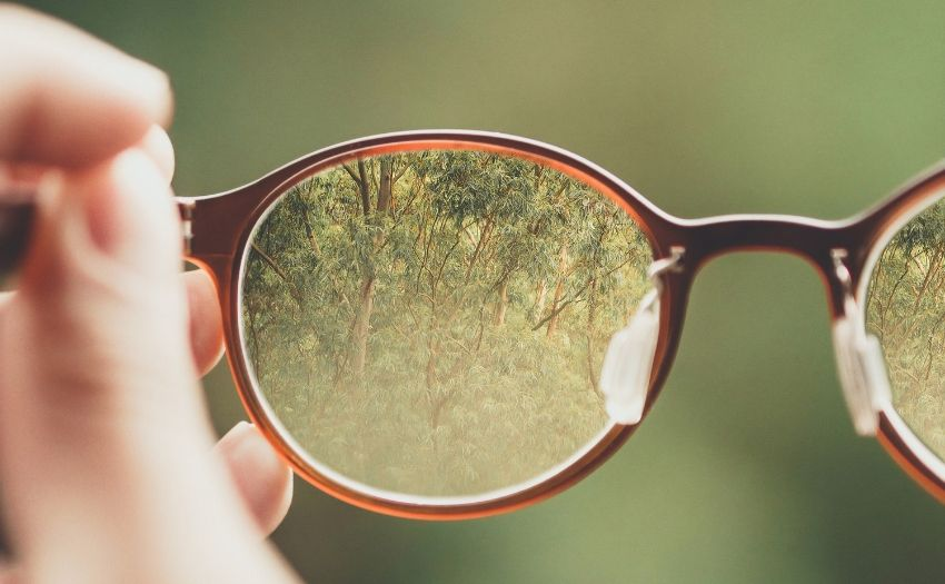 a picture of trees in a pair of eye glasses